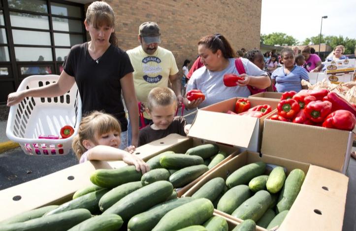Food banks as volunteer community services